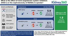 Effect of Renin-Angiotensin System Inhibitors on the Comparative Nephrotoxicity of NSAIDs and Opioids during Hospitalization