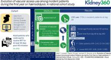 Evolution of Vascular Access Use among Incident Patients during the First Year on Hemodialysis: A National Cohort Study