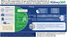 The Gut and Blood Microbiome in IgA Nephropathy and Healthy Controls