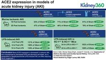 Expression of ACE2 in the Intact and Acutely Injured Kidney