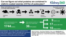 Identification of Podocyte Cargo Proteins by Proteomic Analysis of Clathrin-Coated Vesicles