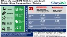A Non-purine Xanthine Oxidoreductase Inhibitor Reduces Albuminuria in Patients with DKD: A Randomized Controlled Trial